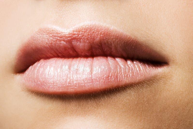 χείλια στοκ φωτογραφία