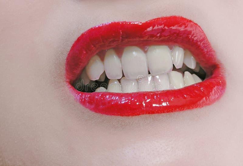 χείλια στοκ εικόνες με δικαίωμα ελεύθερης χρήσης