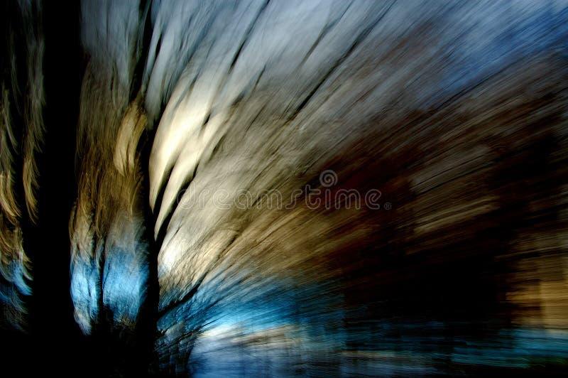 χειμερινά δάση στοκ φωτογραφίες με δικαίωμα ελεύθερης χρήσης