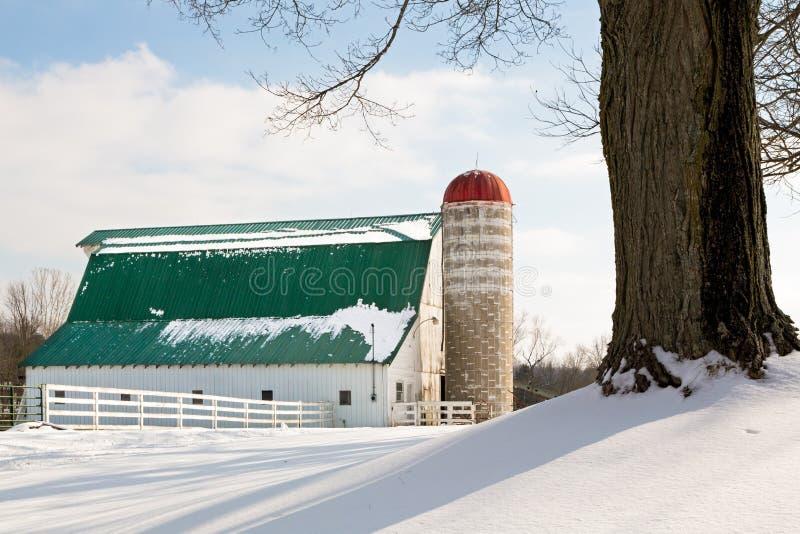 Χειμερινά σιταποθήκη και σιλό στοκ εικόνα με δικαίωμα ελεύθερης χρήσης