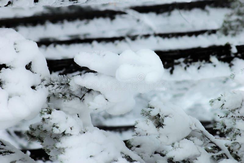 Χειμερινές εγκαταστάσεις στις Άλπεις ευρωπαϊκά στοκ φωτογραφίες