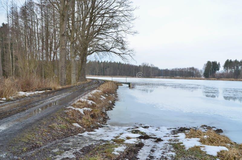 Χειμερινές λίμνες στην επαρχία της νότιας Βοημίας στοκ εικόνες