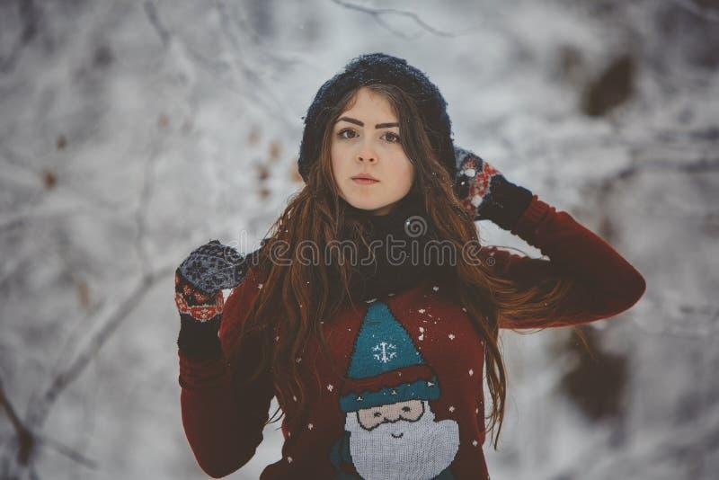 χειμερινές νεολαίες πορτρέτου κοριτσιών στοκ φωτογραφία
