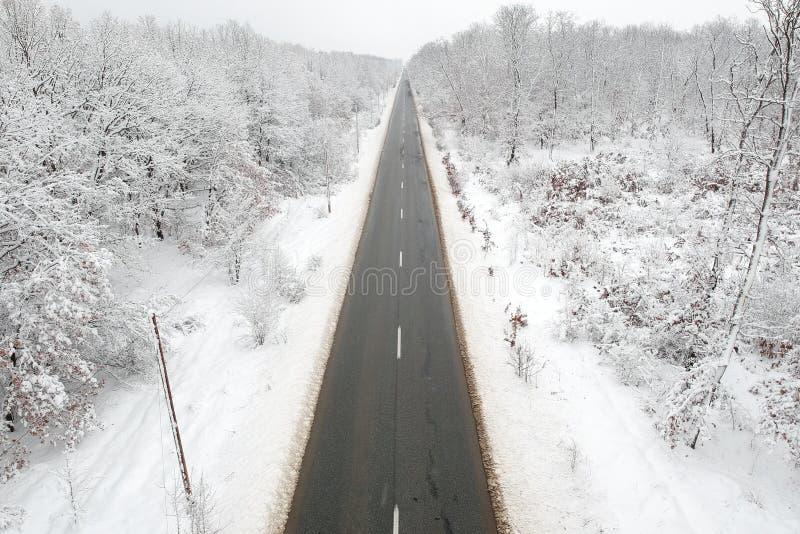 Χειμερινή άποψη ενός δρόμου στη μέση του δάσους στοκ εικόνα