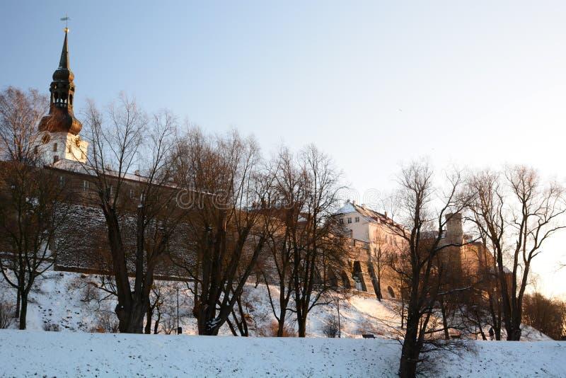 Χειμερινή άποψη λόφων Toompea από Toompark Ταλίν Εσθονία στοκ φωτογραφίες