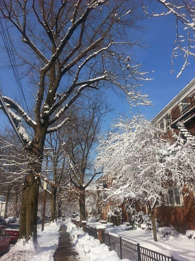 Χειμερινή άφιξη beautiful simply στοκ εικόνες με δικαίωμα ελεύθερης χρήσης