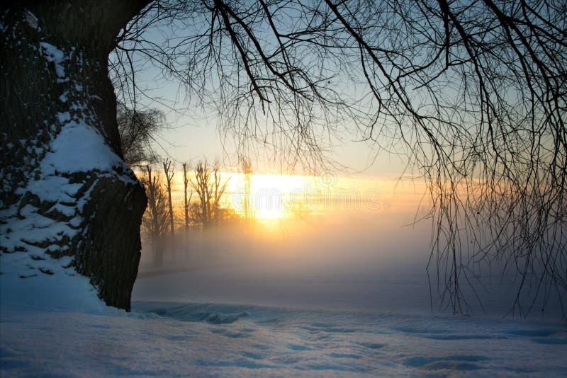Χειμερινή ανατολή πέρα από την ακτή 3 λιμνών στοκ εικόνα