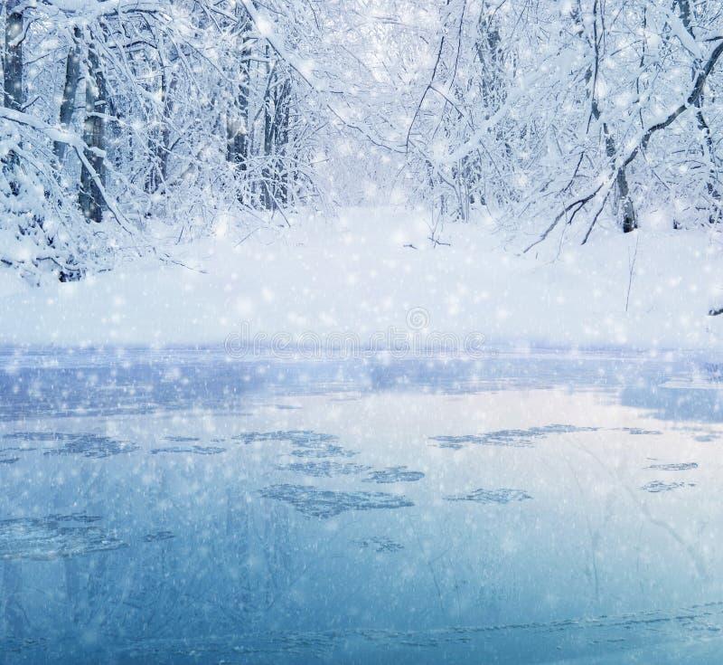 Χειμερινή δασική λίμνη στοκ φωτογραφία με δικαίωμα ελεύθερης χρήσης