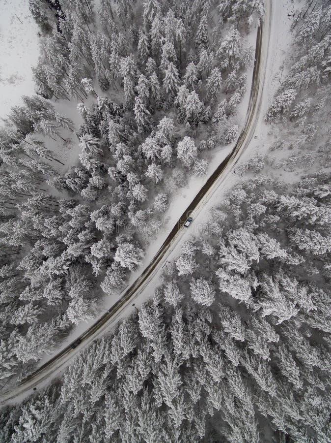Χειμερινή δασική εναέρια άποψη του δρόμου και του μικροσκοπικού αυτοκινήτου στοκ εικόνα με δικαίωμα ελεύθερης χρήσης