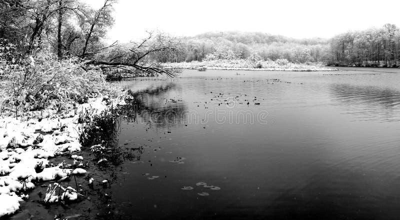 Χειμερινή ημέρα στη λίμνη στοκ εικόνες