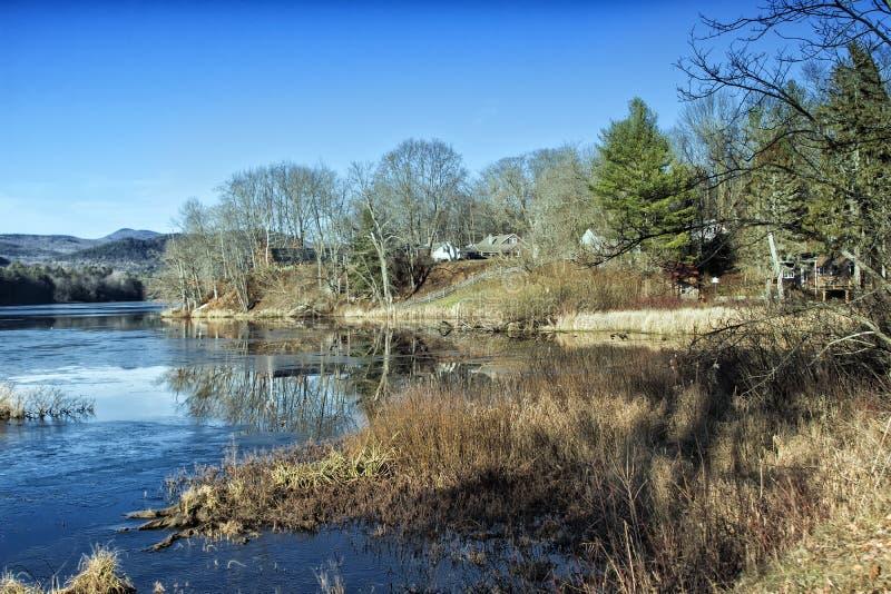 Χειμερινή λίμνη με τα άγονα δέντρα και τη νεκρή χλόη στοκ εικόνα