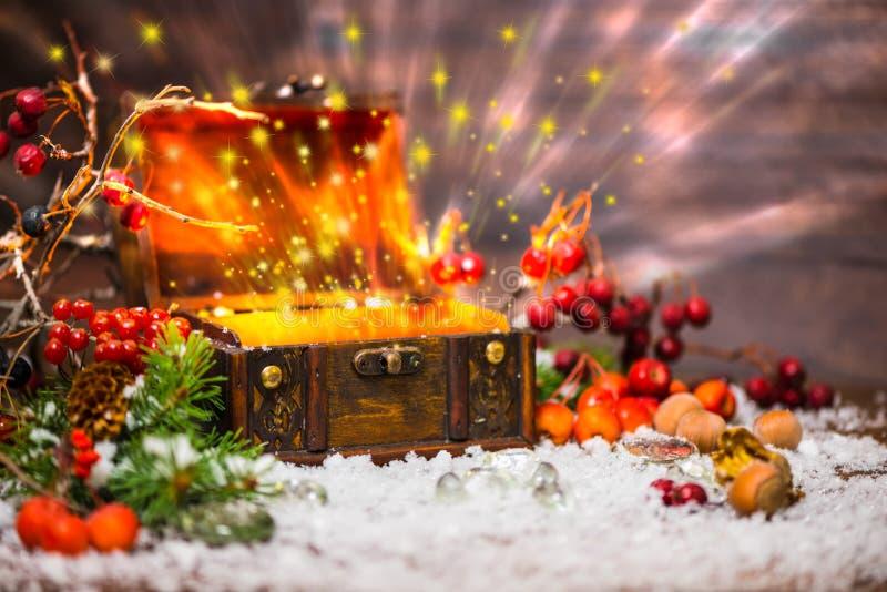 Χειμερινή νεράιδα Χριστουγέννων με το ελαφρύ θαύμα στο ανοιγμένο στήθος Backg στοκ φωτογραφία