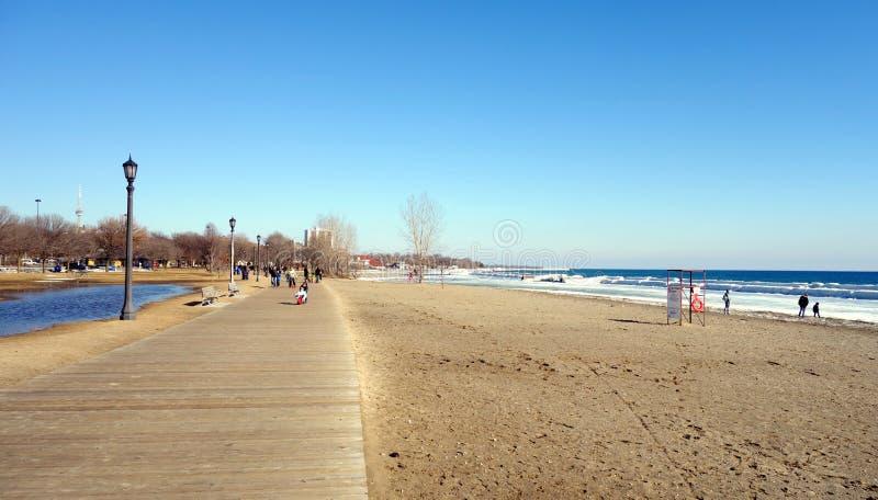 Χειμερινή παραλία του Οντάριο λιμνών στοκ φωτογραφία