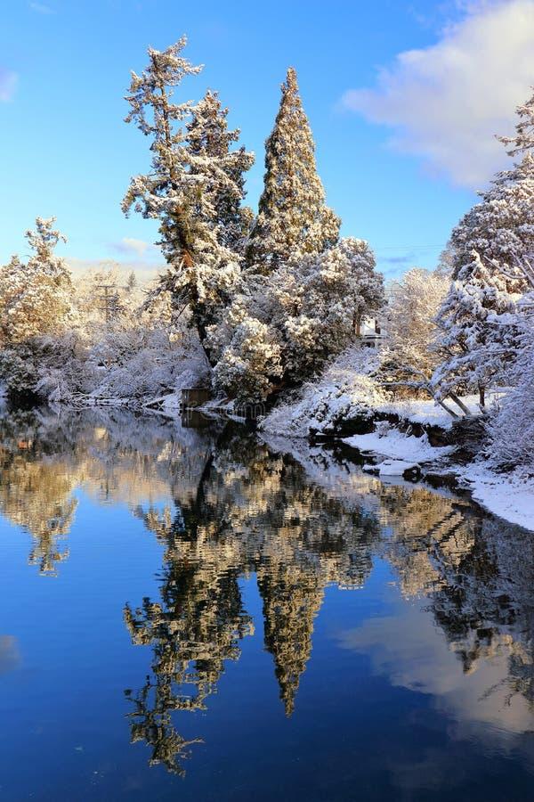 Χειμερινή χώρα των θαυμάτων κατά μήκος της παλιρροιακής υδάτινης οδού φαραγγιών, Βικτώρια, Β Γ στοκ εικόνες