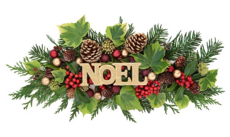 Χειμερινή χλωρίδα και διακόσμηση Noel στοκ εικόνα με δικαίωμα ελεύθερης χρήσης