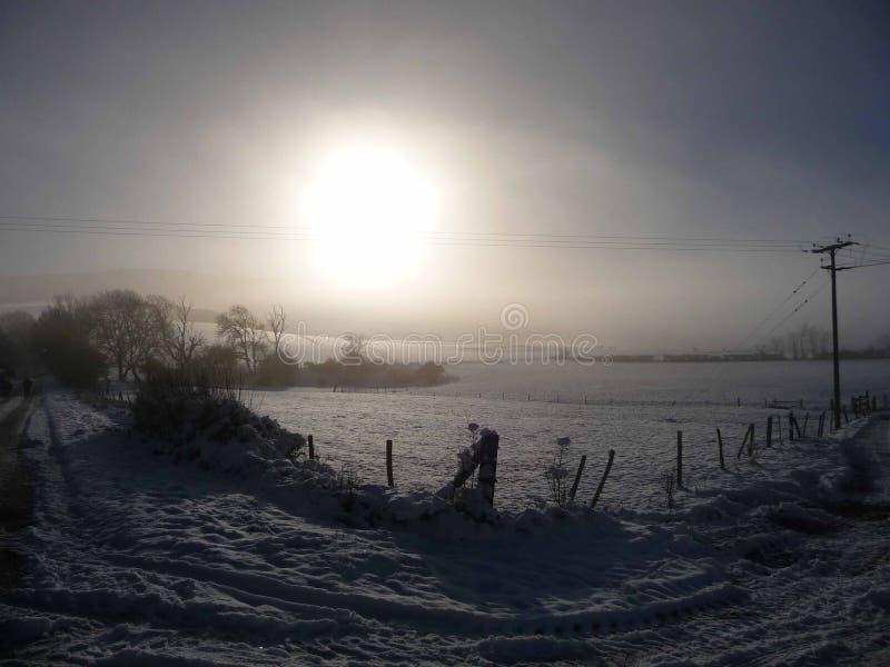 Χειμερινός ήλιος στο Σάσσεξ στοκ εικόνες