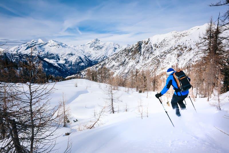 Χειμερινός αθλητισμός: άτομο που κάνει σκι στο χιόνι σκονών στοκ εικόνες