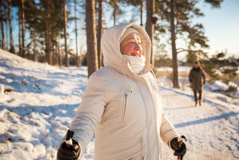 Χειμερινός αθλητισμός στη Φινλανδία - σκανδιναβικό περπάτημα στοκ εικόνες με δικαίωμα ελεύθερης χρήσης