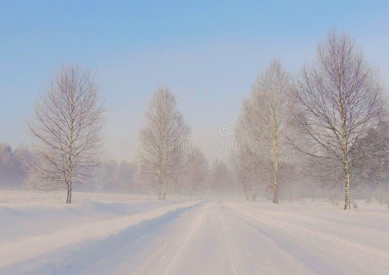 Χειμερινός δρόμος κοντά στην πόλη Siauliai στοκ φωτογραφίες