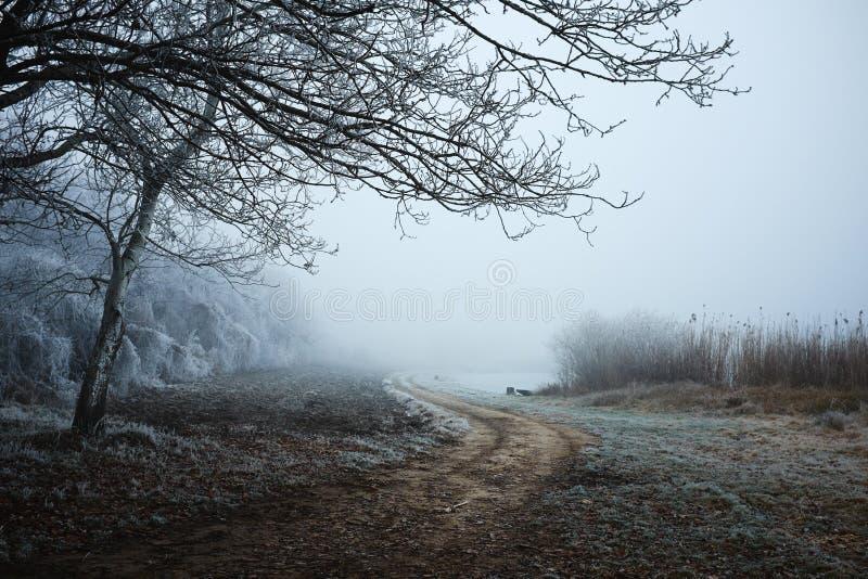 Χειμερινός δρόμος στο πάρκο στοκ εικόνα
