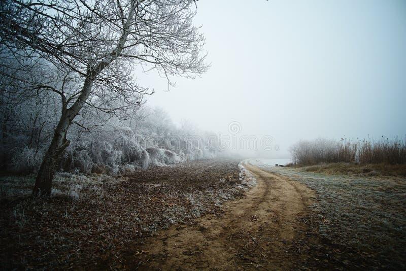Χειμερινός δρόμος στο πάρκο στοκ εικόνες με δικαίωμα ελεύθερης χρήσης