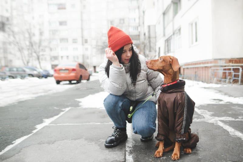 Χειμερινός περίπατος με ένα σκυλί στα ενδύματα σκυλακιών στοκ εικόνες με δικαίωμα ελεύθερης χρήσης