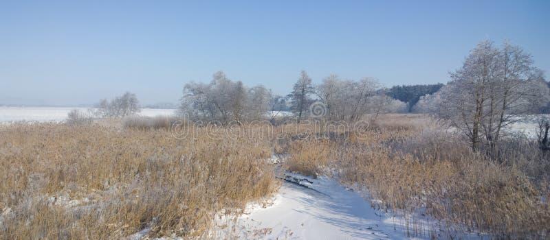 Χειμερινός ποταμός Ηλιόλουστη παγωμένη ημέρα στοκ εικόνες