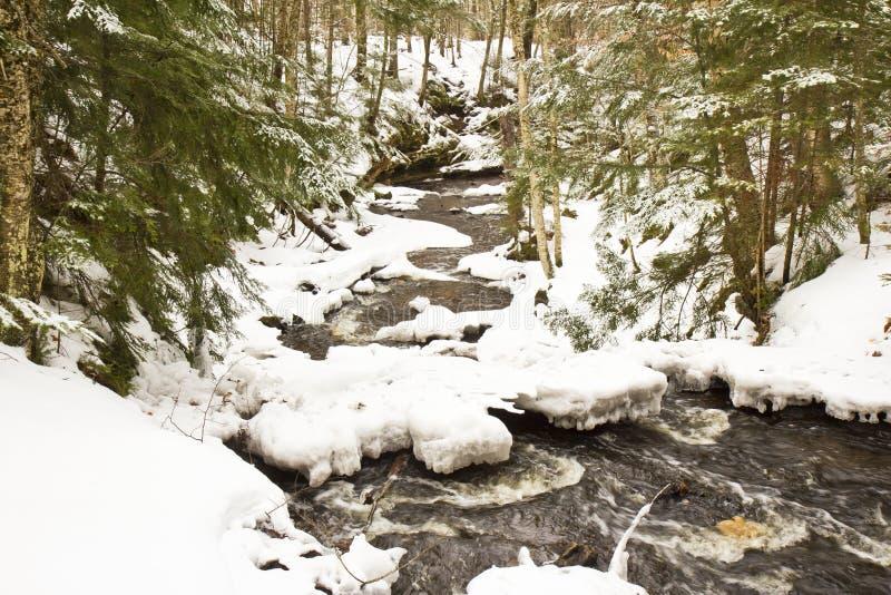 Χειμερινός ποταμός στοκ φωτογραφίες με δικαίωμα ελεύθερης χρήσης
