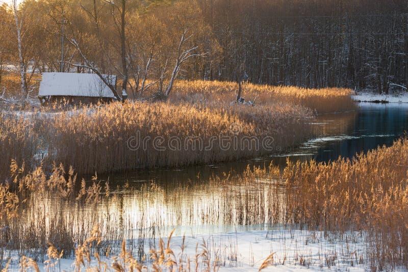 Χειμερινό αγροτικό τοπίο πρωινού: Ένα παλαιό χιονισμένο εγκαταλειμμένο σπίτι στις όχθεις ενός ποταμού ή μιας λίμνης, που περιβάλλ στοκ εικόνες