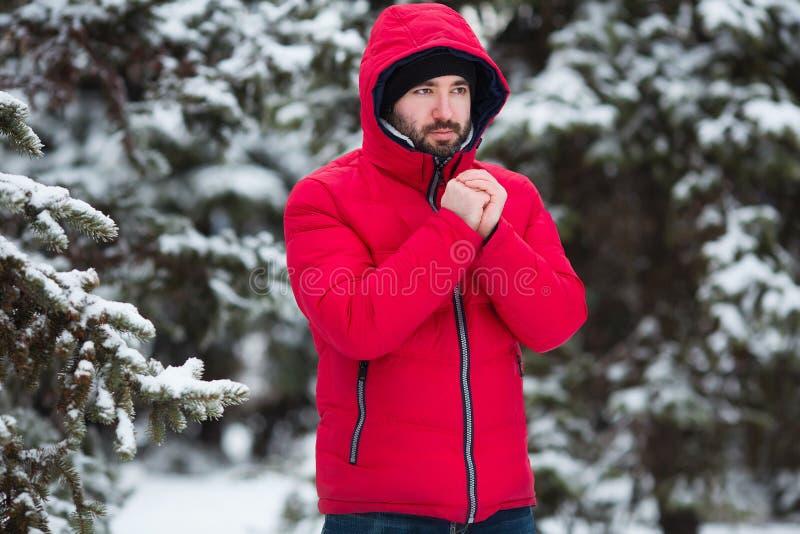 Χειμερινό αρσενικό πορτρέτο Το νέο γενειοφόρο άτομο που προσπαθεί να θερμάνει το κρύο του παραδίδει το χειμερινό πάρκο παγετού κρ στοκ εικόνα