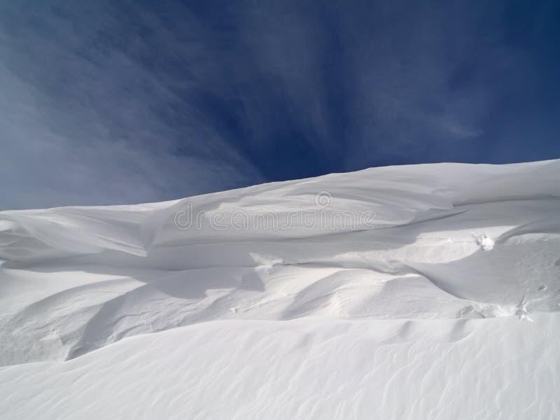 Χειμερινό δάσος στο χιόνι στοκ φωτογραφία με δικαίωμα ελεύθερης χρήσης