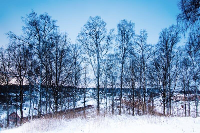 Χειμερινό εποχιακό τοπίο στοκ φωτογραφία με δικαίωμα ελεύθερης χρήσης