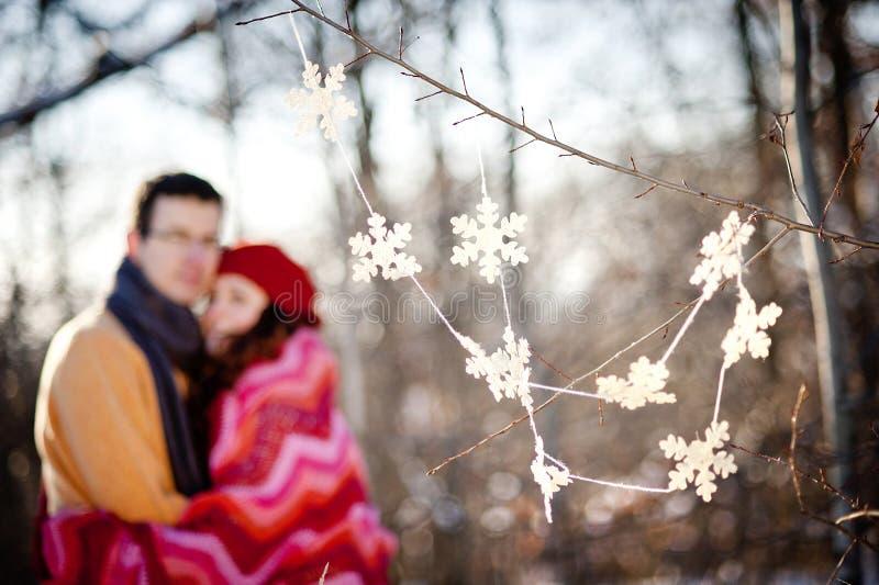 Χειμερινό ζεύγος στοκ εικόνα