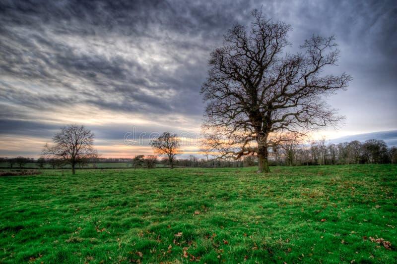 Χειμερινό ηλιοβασίλεμα πέρα από την αγγλική επαρχία στοκ εικόνες