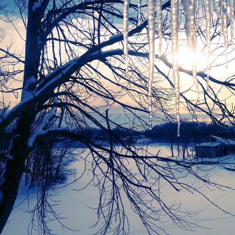 Χειμερινό ηλιοβασίλεμα όχθεων της λίμνης στοκ φωτογραφία με δικαίωμα ελεύθερης χρήσης