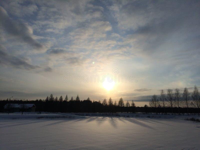Χειμερινό ηλιοβασίλεμα πέρα από έναν τομέα και τα δέντρα στοκ εικόνες