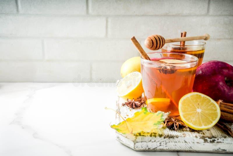 Χειμερινό καυτό πικάντικο τσάι φθινοπώρου στοκ φωτογραφία