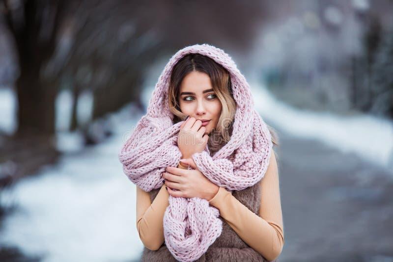 Χειμερινό πορτρέτο: Η νέα όμορφη γυναίκα έντυσε τα θερμά μάλλινα ενδύματα, μαντίλι και κάλυψε το κεφάλι που θέτει έξω στοκ εικόνες με δικαίωμα ελεύθερης χρήσης