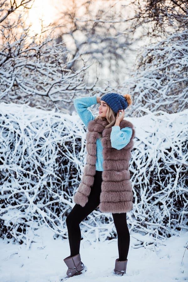 Χειμερινό πορτρέτο: Η νέα όμορφη γυναίκα έντυσε τα θερμά μάλλινα ενδύματα και το καπέλο που θέτουν έξω στοκ εικόνα με δικαίωμα ελεύθερης χρήσης