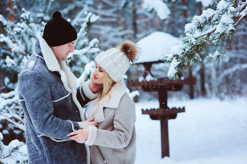 Χειμερινό πορτρέτο του ευτυχούς ρομαντικού ζεύγους που αγκαλιάζει και που φαίνεται ο ένας στον άλλο υπαίθριου στη χιονώδη ημέρα στοκ φωτογραφία με δικαίωμα ελεύθερης χρήσης