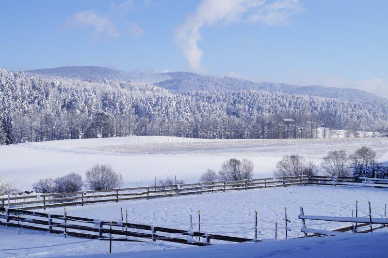 Χειμερινό τοπίο με μια χιονισμένη μάνδρα για τα άλογα και με τα χιονισμένα δάση και τα δασώδη βουνά Μια φωτογραφία στοκ φωτογραφίες με δικαίωμα ελεύθερης χρήσης