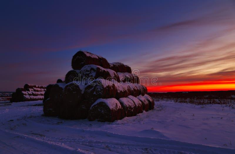 Χειμερινό τοπίο με την άποψη των χιονισμένων δεμάτων αχύρου στον τομέα στο ηλιοβασίλεμα στοκ εικόνα