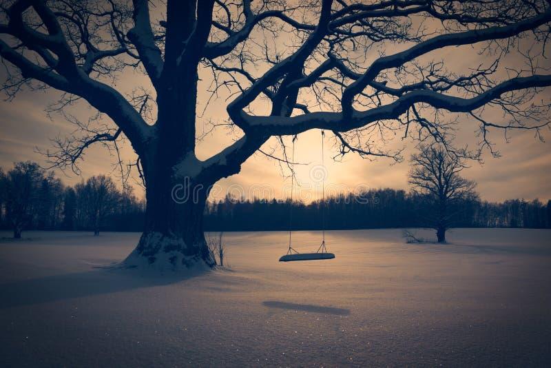Χειμερινό τοπίο με την εγκαταλειμμένη ταλάντευση δέντρων στοκ φωτογραφία με δικαίωμα ελεύθερης χρήσης