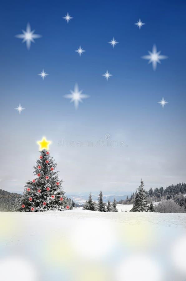 Χειμερινό τοπίο με τον ουρανό αστεριών στοκ εικόνες