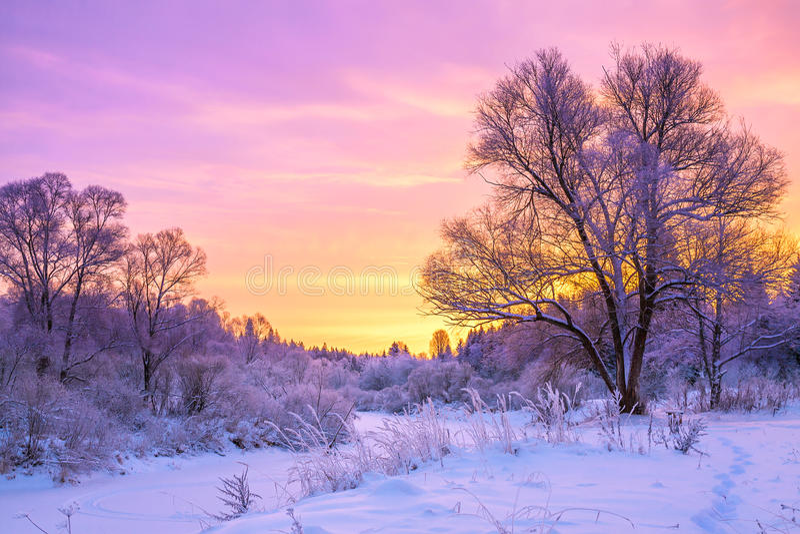 Χειμερινό τοπίο με το ηλιοβασίλεμα και το δάσος στοκ εικόνα