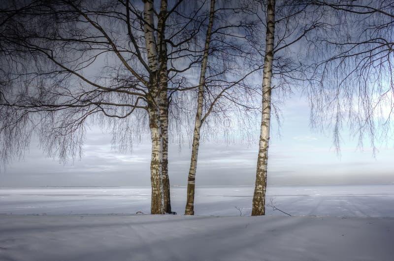 Χειμερινό τοπίο, Ρωσία στοκ φωτογραφία με δικαίωμα ελεύθερης χρήσης