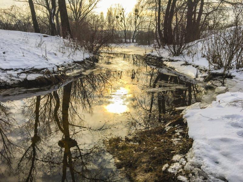 Χειμερινό τοπίο στο ηλιοβασίλεμα: ένα ρεύμα που καλύπτεται με τον πάγο, τα δέντρα και τους θάμνους στην ακτή στοκ εικόνες με δικαίωμα ελεύθερης χρήσης