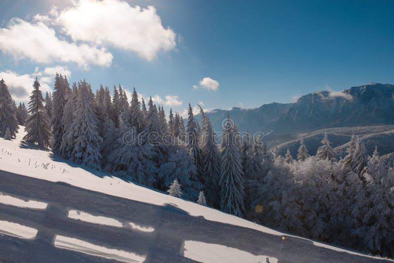 Χειμερινό τοπίο carpathians των βουνών, του χιονώδεις φράκτη και fir-tree Μπλε ουρανός και ηλιόλουστη ημέρα Ρουμανία, Poiana Bras στοκ φωτογραφία με δικαίωμα ελεύθερης χρήσης