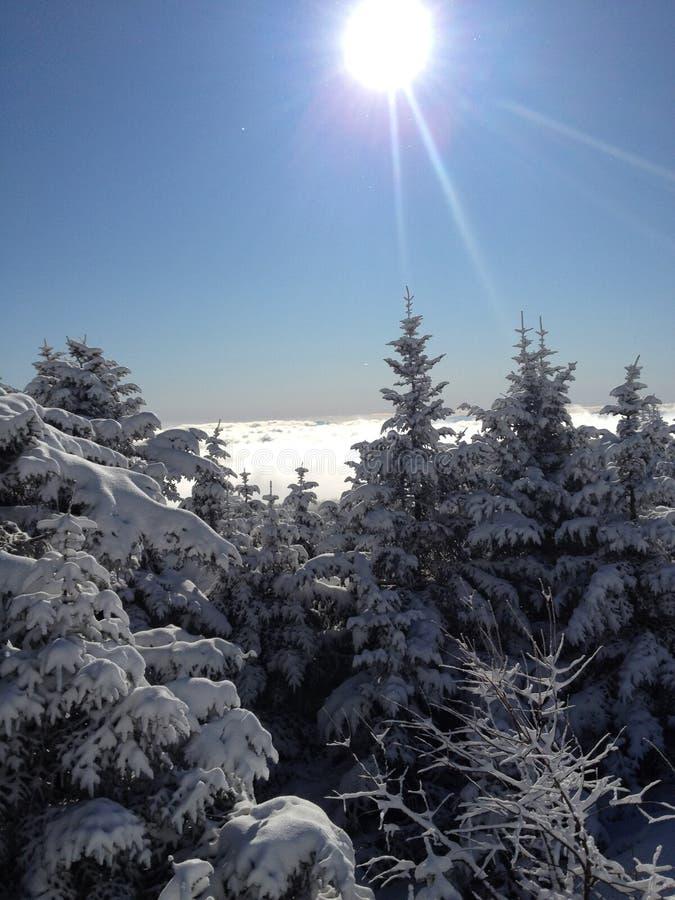 Χειμερινό τοπίο - Killington Βερμόντ στοκ φωτογραφίες με δικαίωμα ελεύθερης χρήσης
