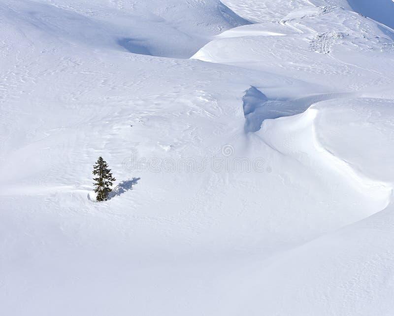 Χειμερινό χιονώδες υπόβαθρο τοπίων μινιμαλισμού στοκ φωτογραφία με δικαίωμα ελεύθερης χρήσης